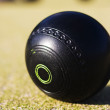 Lawn Bowls Ball — Stock Photo
