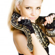 Gorgeous Blonde Snake Handler — Stockfoto