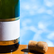 Champagne Bottle And Cork — Stock Photo