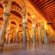 Mezquita, Cordoba, Spain — Stock Photo #7964302