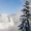 Winter in the mountains — Stock Photo #8824122