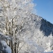 Winter snow in the mountains - Stock Photo
