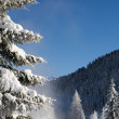 Winter and snow in the mountains — Stock Photo