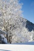 Neige de l'hiver dans les montagnes — Photo