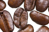 Coffee Bean Extreme Macro — Foto Stock