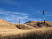 Grasslands and Phone Poles — Stock Photo