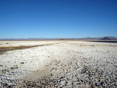 Zzyzx Dry Lake — Stock Photo
