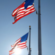 Washington Monument Flags — Foto de Stock