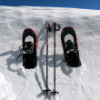 Stock Photo: Snowshoes and Poles