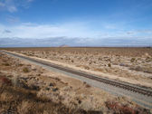 Joshua Trees and Rails — Stock Photo