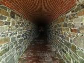 Korku tüneli — Stok fotoğraf
