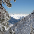 Mt. Baldy California Winter — Stock Photo