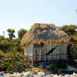 Palapa on a Beach — Stock Photo