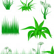 The green grass on white background — Stock Vector