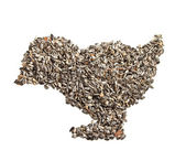 Sunflower seeds background in the form of a bird. — Stock Photo