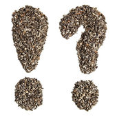 Sunflower seeds in the form of punctuation. — Photo