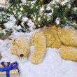 The polar bear is sleeping under the Christmas tree. — Стоковая фотография