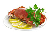 Crab on a platter — Stockfoto