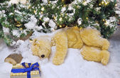 Kutup ayısı noel ağacının altında uyuyor. — Stok fotoğraf
