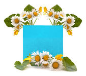 Blue space for your text with a bouquet of fresh flowers — Stock Photo