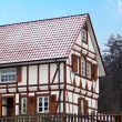 Alsace typical traditional House — Stock Photo #8454824