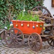 Old wagon with flowers. Homestead. — Stock Photo #8455711
