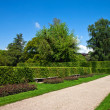 Footpath in a beautiful park. Landscape. — Stock Photo #8457648