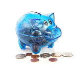 Pig a coin box with coins on a white background — Stock Photo