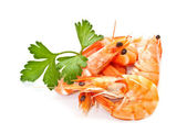Prawns with a sprig of parsley on a white background — Stock Photo