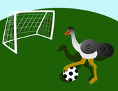 Struisvogel, voetballen — Stockvector