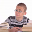 The young student — Stock Photo #10230255