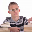 The young student — Stock Photo #10230274
