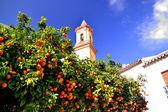 Church of Estepona — Stock Photo