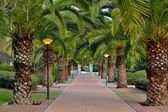 Park benalmadena — Stock Photo