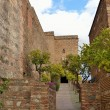 Walls of the Alcazaba - Stock Photo