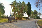 Park Velez-Malaga — Stock Photo