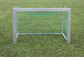 Goal on grass — Stock Photo