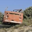 Abandoned van wreck — Stock Photo