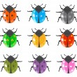 Stock Vector: Ladybird insect and glossy bugs icon set