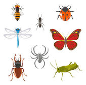 Insect icon set — Stock Vector