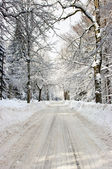 Straße im winter — Stockfoto