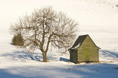 Green cottage on during the winter — Stock Photo