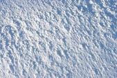 Fresh snow surface — Stock Photo
