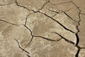 Global warming concept of cracked ground. Cracked and Arid Mud Ground Dry without water — Stock Photo