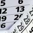 2013 year calendar — Stock Photo #10579121