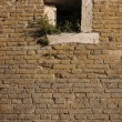 Old brick wall window — Stock Photo
