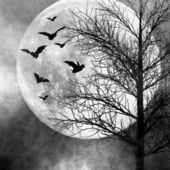 Halloween spooky night background — Stock Photo