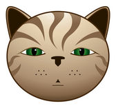 Gato pardo — Stock vektor