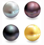 Beautiful pearls, realistic vector illustration — Stockvektor