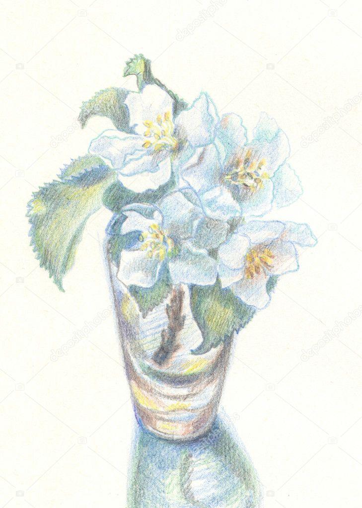 apfelbaum blumen in glas — stockfoto © yul17 #8685397, Best garten ideen